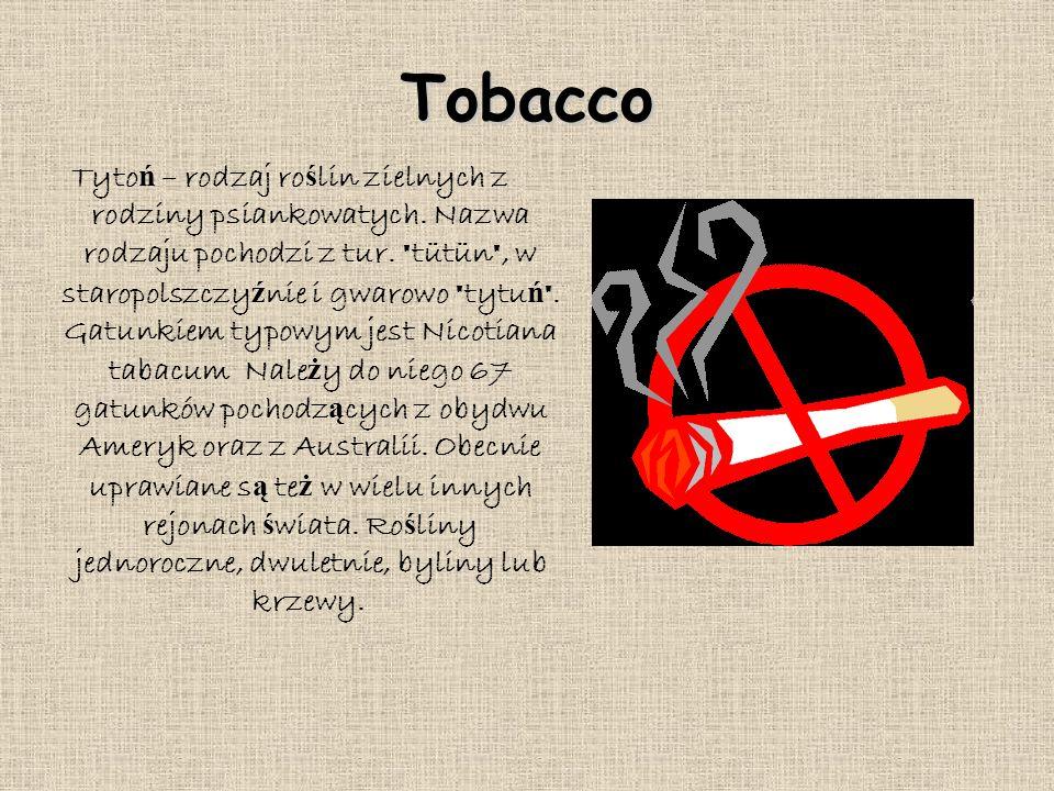 Tobacco Tyto ń – rodzaj ro ś lin zielnych z rodziny psiankowatych. Nazwa rodzaju pochodzi z tur.