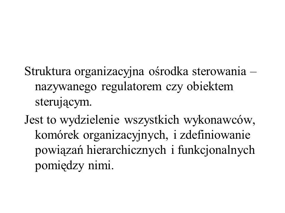 Struktura organizacyjna ośrodka sterowania – nazywanego regulatorem czy obiektem sterującym. Jest to wydzielenie wszystkich wykonawców, komórek organi