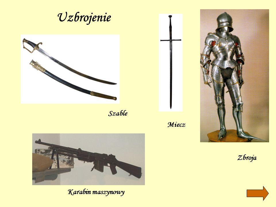 Uzbrojenie Szable Miecz Zbroja Karabin maszynowy
