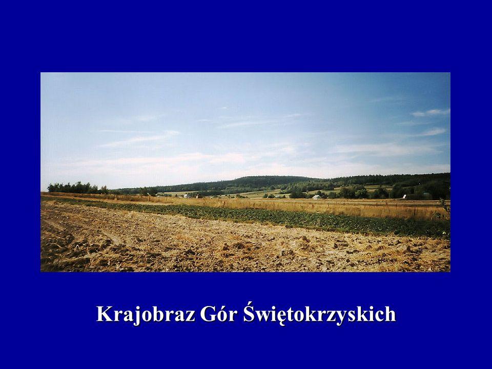 Krajobraz Gór Świętokrzyskich