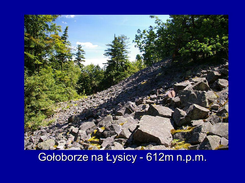 Gołoborze na Łysicy - 612m n.p.m.