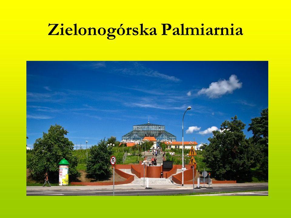 Zielonogórska Palmiarnia
