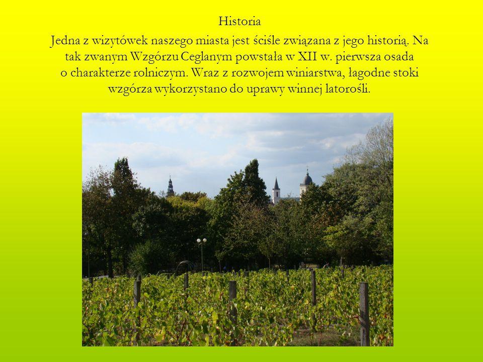Historia Jedna z wizytówek naszego miasta jest ściśle związana z jego historią. Na tak zwanym Wzgórzu Ceglanym powstała w XII w. pierwsza osada o char