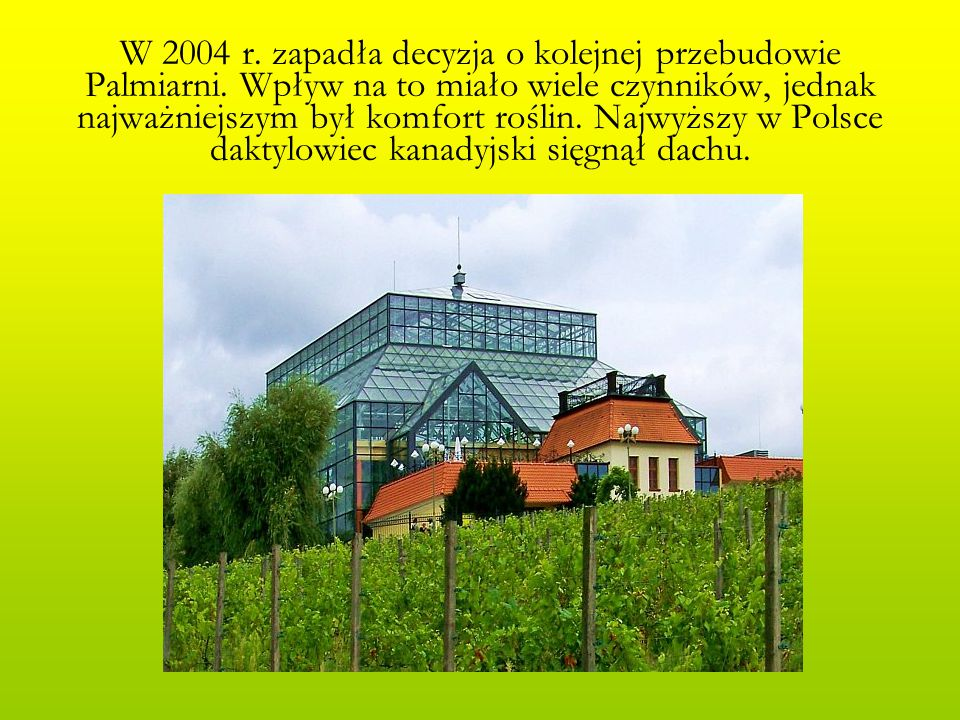 W 2004 r. zapadła decyzja o kolejnej przebudowie Palmiarni. Wpływ na to miało wiele czynników, jednak najważniejszym był komfort roślin. Najwyższy w P