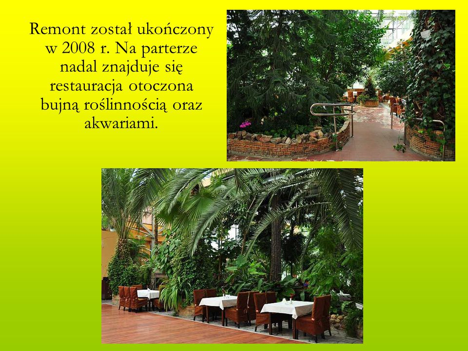 Remont został ukończony w 2008 r. Na parterze nadal znajduje się restauracja otoczona bujną roślinnością oraz akwariami.
