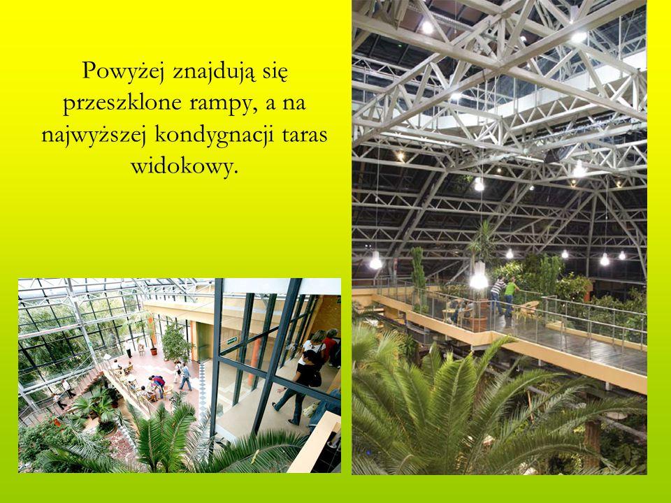 Powyżej znajdują się przeszklone rampy, a na najwyższej kondygnacji taras widokowy.