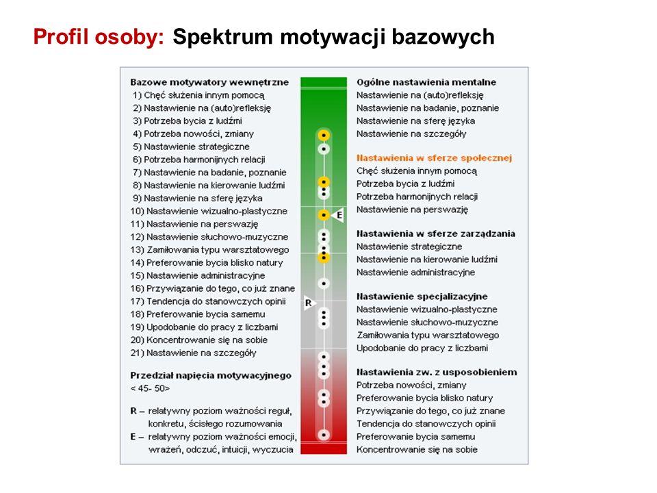 Profil osoby: Spektrum motywacji bazowych