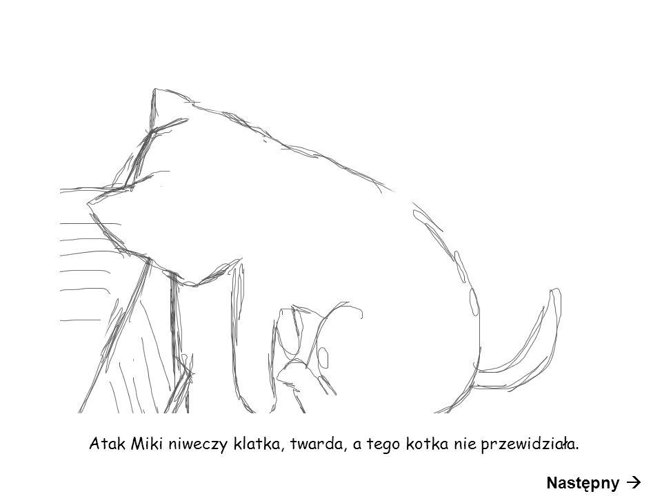 Atak Miki niweczy klatka, twarda, a tego kotka nie przewidziała. Następny 