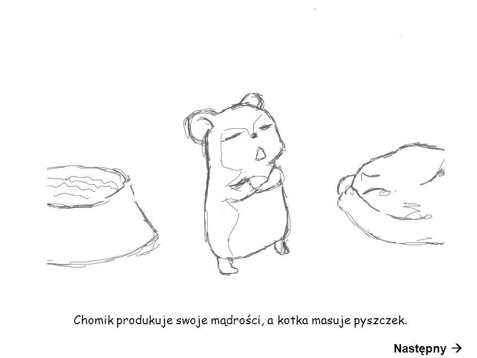 Chomik produkuje swoje mądrości, a kotka masuje pyszczek. Następny 