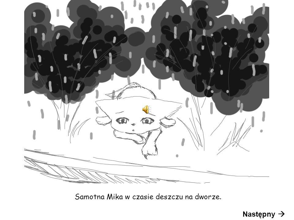 Samotna Mika w czasie deszczu na dworze. Następny 