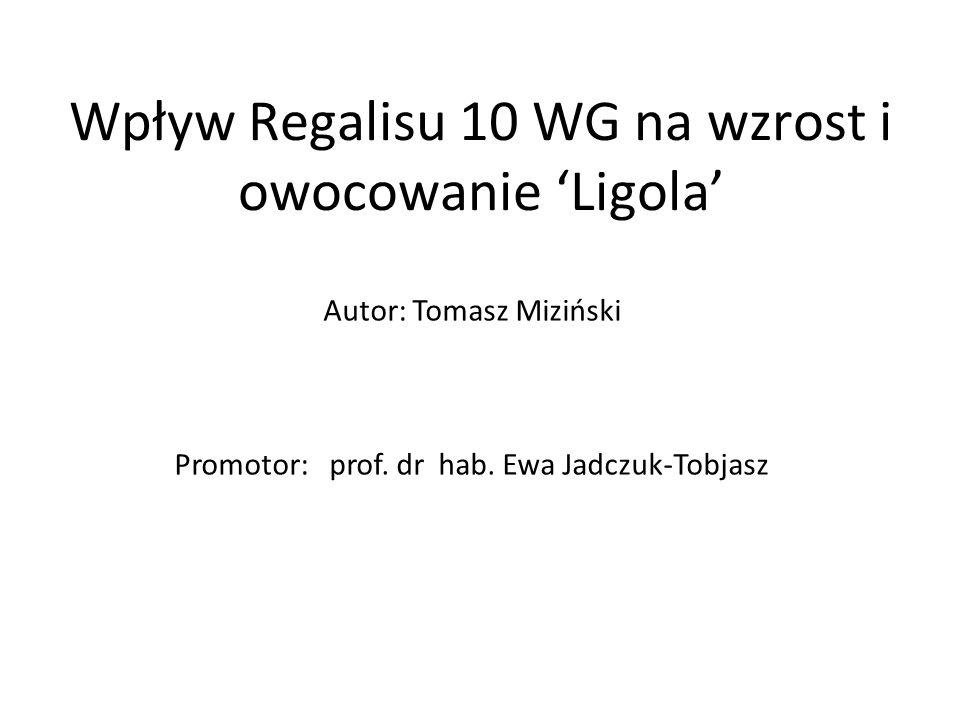 Wpływ Regalisu 10 WG na wzrost i owocowanie 'Ligola' Autor: Tomasz Miziński Promotor: prof. dr hab. Ewa Jadczuk-Tobjasz