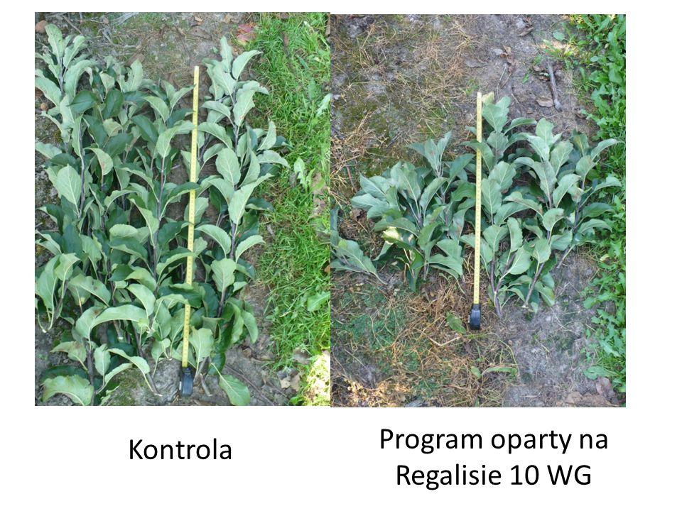 Kontrola Program oparty na Regalisie 10 WG