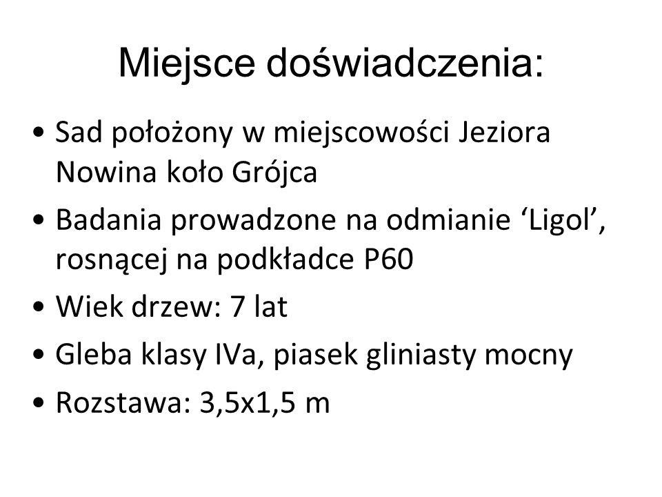 Miejsce doświadczenia: Sad położony w miejscowości Jeziora Nowina koło Grójca Badania prowadzone na odmianie 'Ligol', rosnącej na podkładce P60 Wiek d