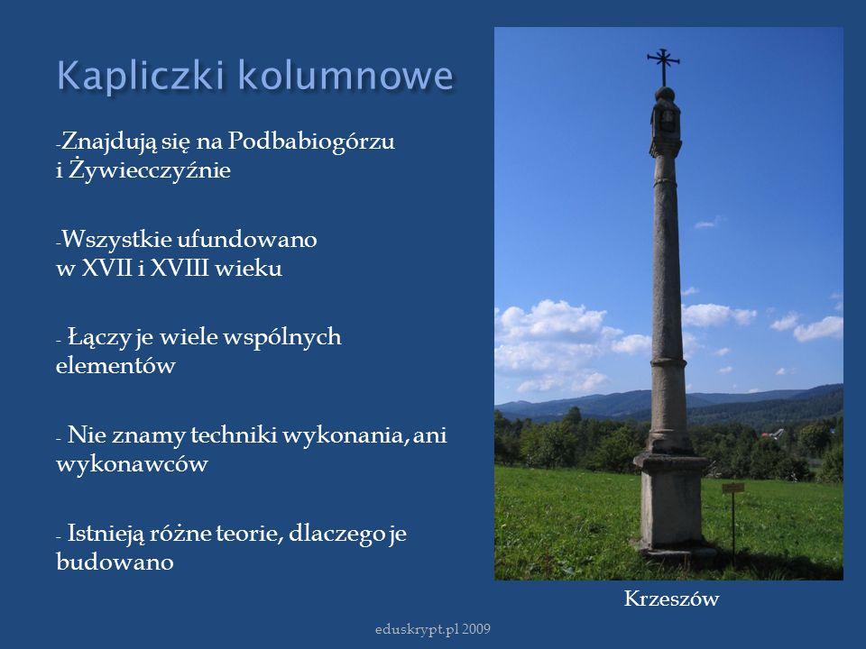 Kapliczki kolumnowe - Znajdują się na Podbabiogórzu i Żywiecczyźnie - Wszystkie ufundowano w XVII i XVIII wieku - Łączy je wiele wspólnych elementów -