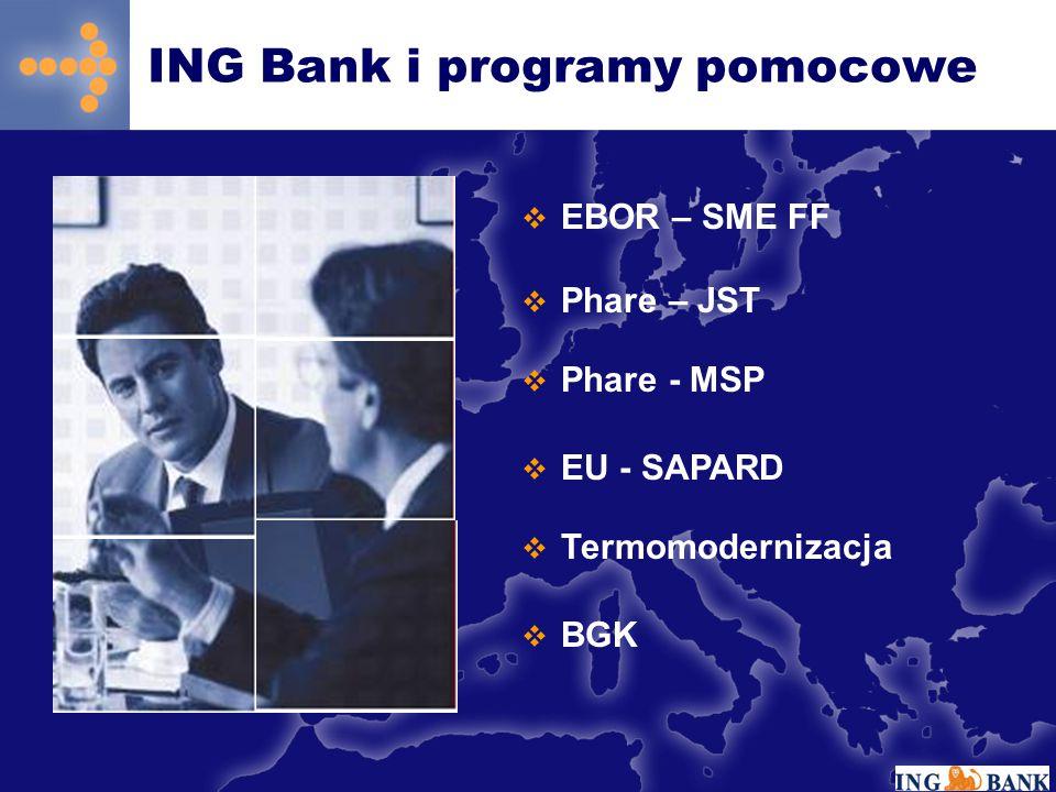 ING Bank i programy pomocowe  EBOR – SME FF  Phare – JST  Phare - MSP  EU - SAPARD  Termomodernizacja  BGK