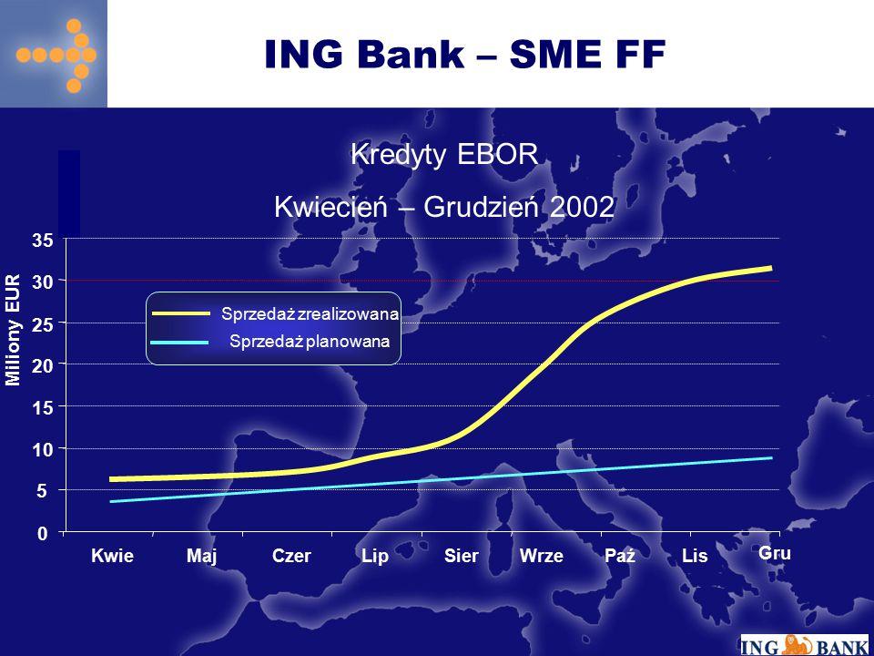0 5 10 15 20 25 30 KwieMajCzerLip SierWrzePaźLis Miliony EUR Gru 35 Kredyty EBOR Kwiecień – Grudzień 2002 Sprzedaż zrealizowana Sprzedaż planowana ING Bank – SME FF