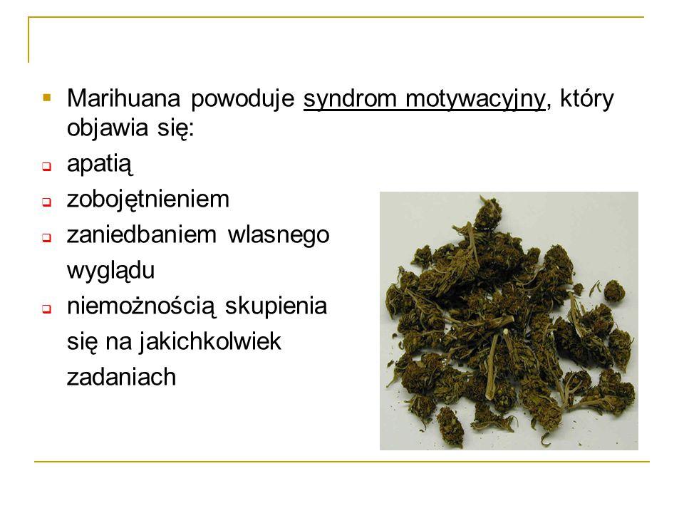  Marihuana powoduje syndrom motywacyjny, który objawia się:  apatią  zobojętnieniem  zaniedbaniem wlasnego wyglądu  niemożnością skupienia się na jakichkolwiek zadaniach