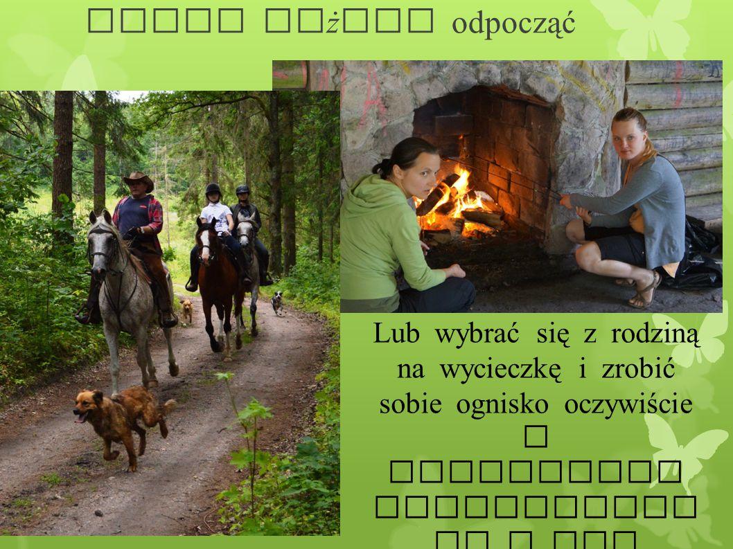 Gdzie możemy odpocząć Lub wybrać się z rodziną na wycieczkę i zrobić sobie ognisko oczywiście w specjalnie przygotowan ym w tym celu miejscu.