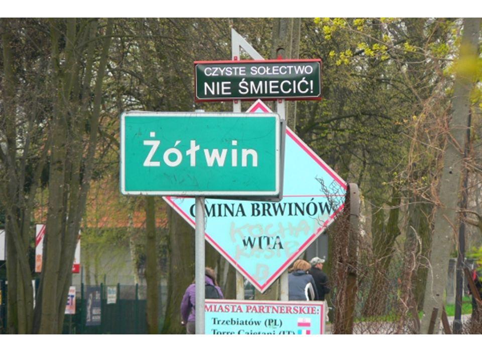 Wieś Żółwin położona jest na wschodnim skraju Lasów Młochowskich.