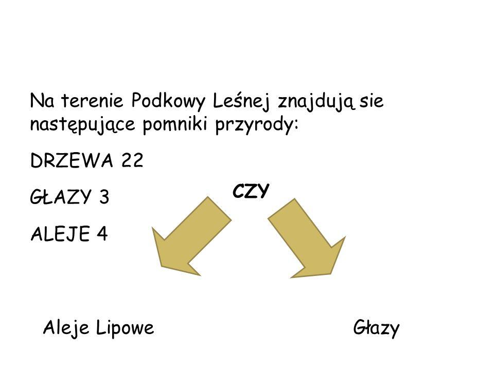 G ł azy NR.1 NR. 2 fot. Joanna Snarska-Pasternak 1.