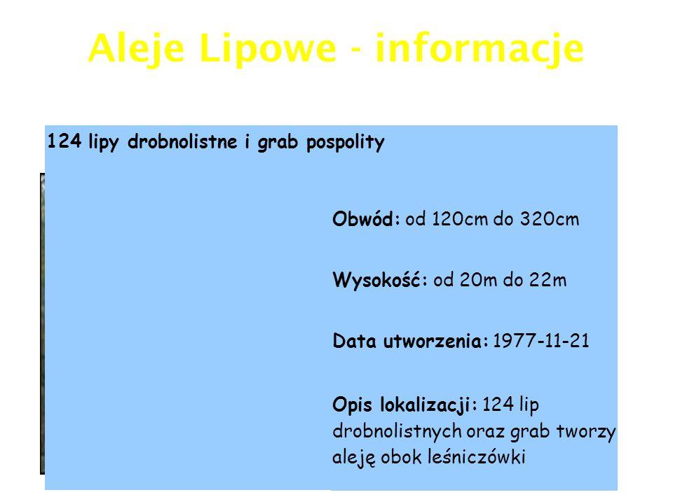 Warto zobaczyć miedzy innymi: Aleję Lipową, liczącą prawie 100 lip (pomnik ó w przyrody), pałacyk myśliwski Lilpopa, willę Aida oraz przedwojenną willę Kasyno Obywatelskie .