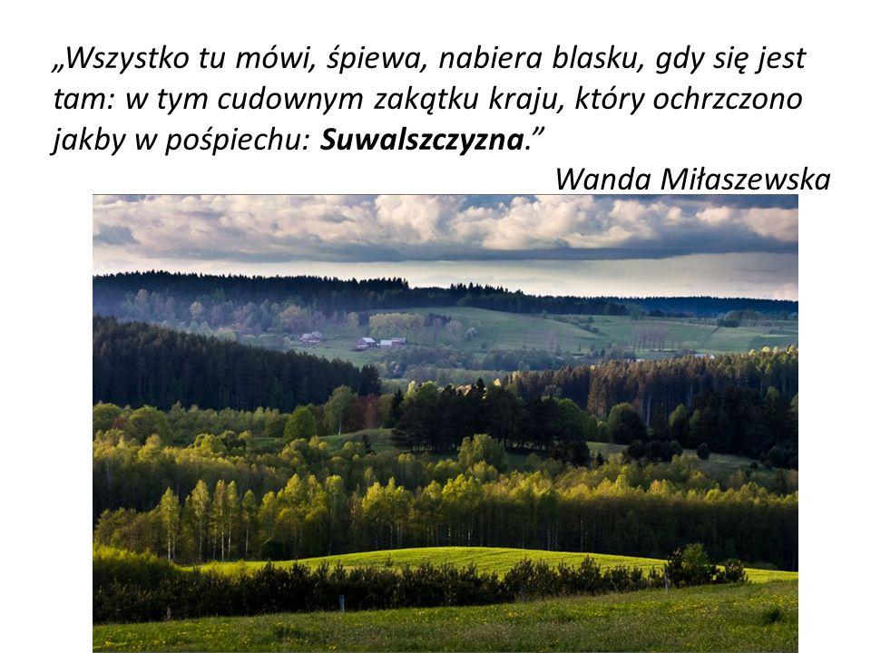 """""""Wszystko tu mówi, śpiewa, nabiera blasku, gdy się jest tam: w tym cudownym zakątku kraju, który ochrzczono jakby w pośpiechu: Suwalszczyzna. Wanda Miłaszewska"""