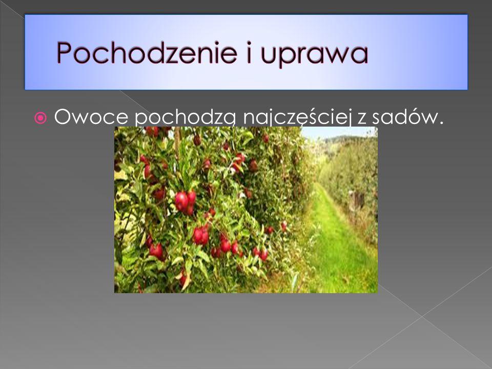  Owoce pochodzą najczęściej z sadów.