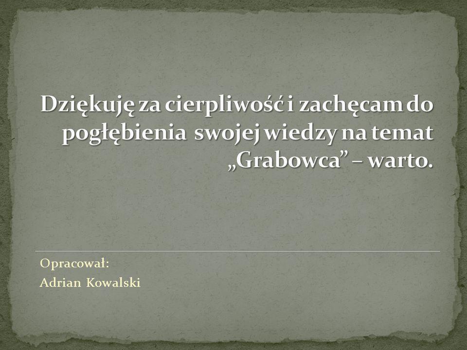 Opracował: Adrian Kowalski