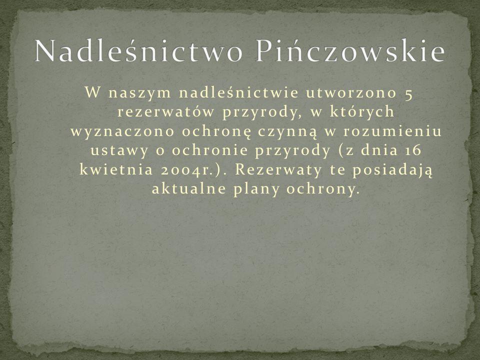 W naszym nadleśnictwie utworzono 5 rezerwatów przyrody, w których wyznaczono ochronę czynną w rozumieniu ustawy o ochronie przyrody (z dnia 16 kwietnia 2004r.).