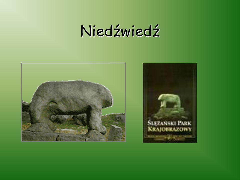 Rzeźby kultowe Jednymi z ciekawszych zabytków Ślężańskiego Parku Krajobrazowego są rzeźby kultowe: niedźwiedź mnich grzyb panna z rybą