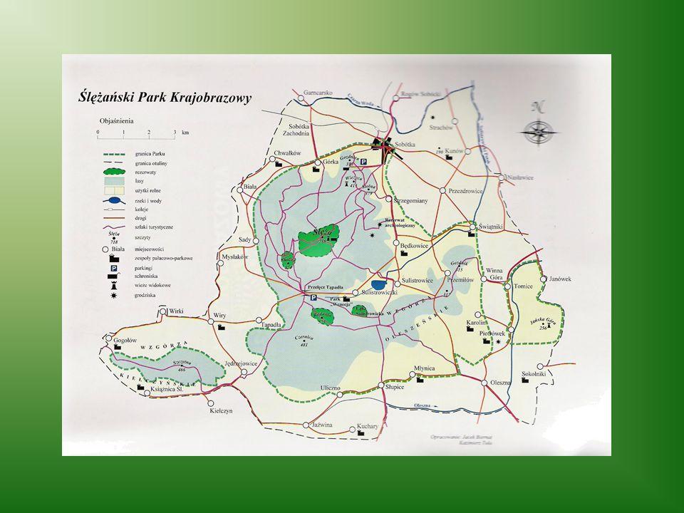Rezerwaty przyrody Na terenie Parku znajduje się kilka rezerwatów przyrody: Łąka Sulistrowicka z cennymi okazami roślin chronionych, Góra Radunia, Gór