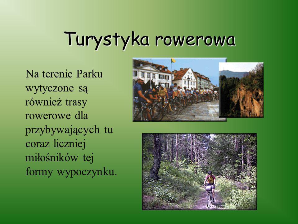 Szlaki turystyczne W ŚPK znajdują się szlaki turystyczne o różnym stopniu trudności, krótko i długodystansowe. Najważniejsze z nich to: szlak żółty: S
