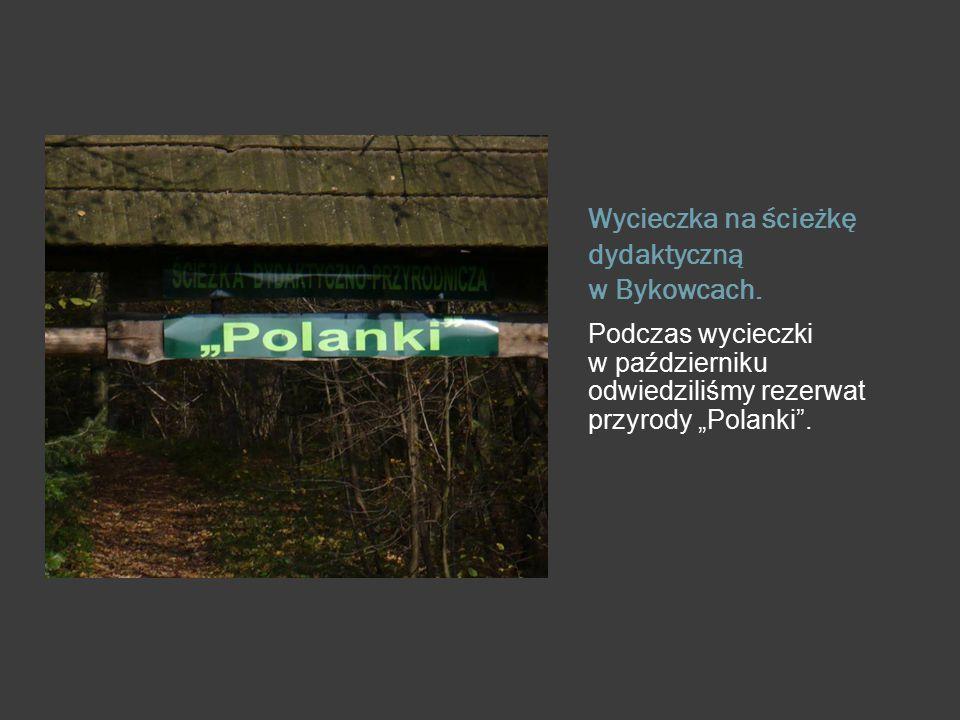 """Wycieczka na ścieżkę dydaktyczną w Bykowcach. Podczas wycieczki w październiku odwiedziliśmy rezerwat przyrody """"Polanki""""."""