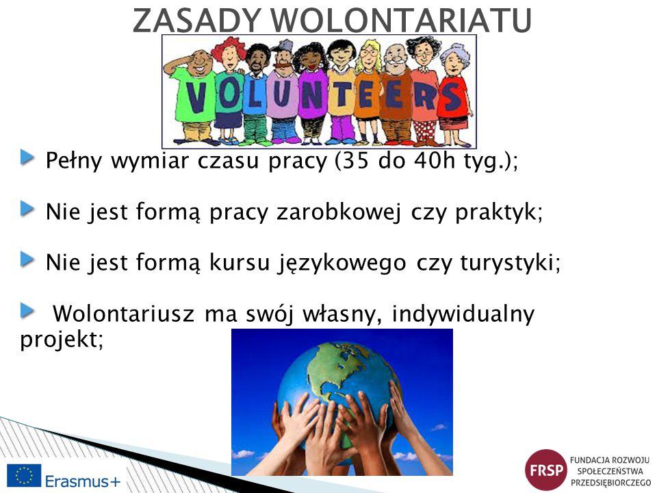 Tematyka: Dzieci i młodzież Kultura Ekologia Sport Prawa człowieka Edukacja Polityka ICT