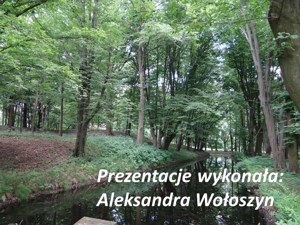 Prezentacje wykonała: Aleksandra Wołoszyn