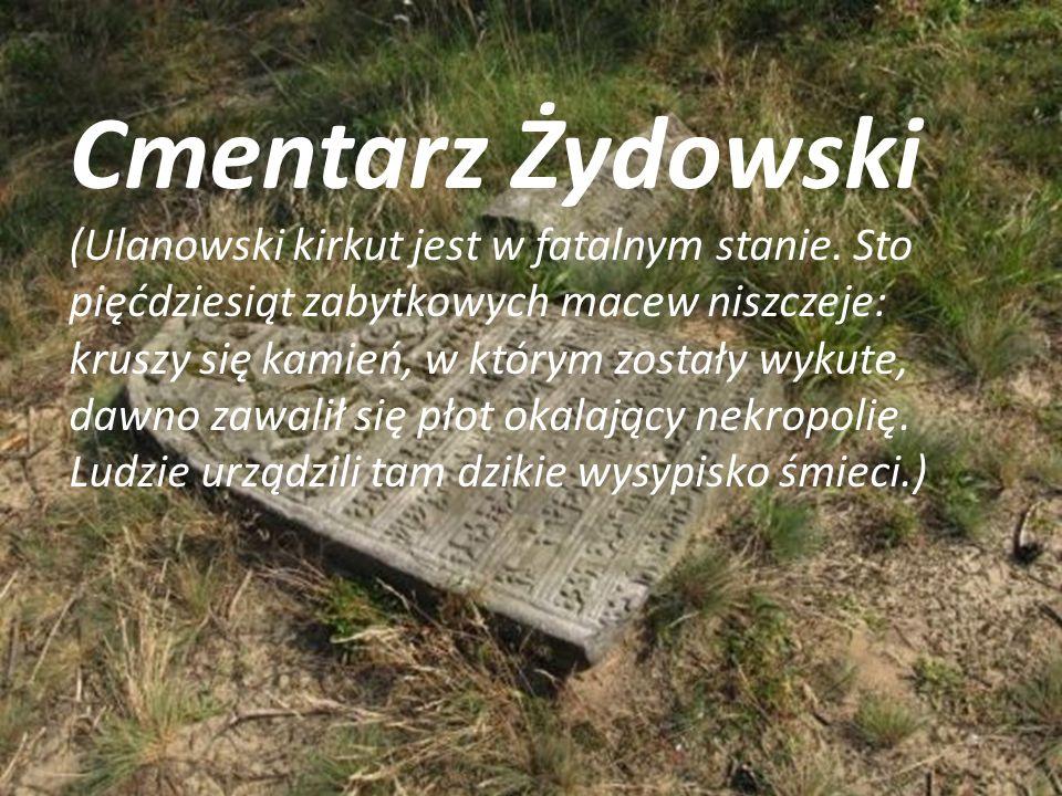 Cmentarz Żydowski (Ulanowski kirkut jest w fatalnym stanie. Sto pięćdziesiąt zabytkowych macew niszczeje: kruszy się kamień, w którym zostały wykute,