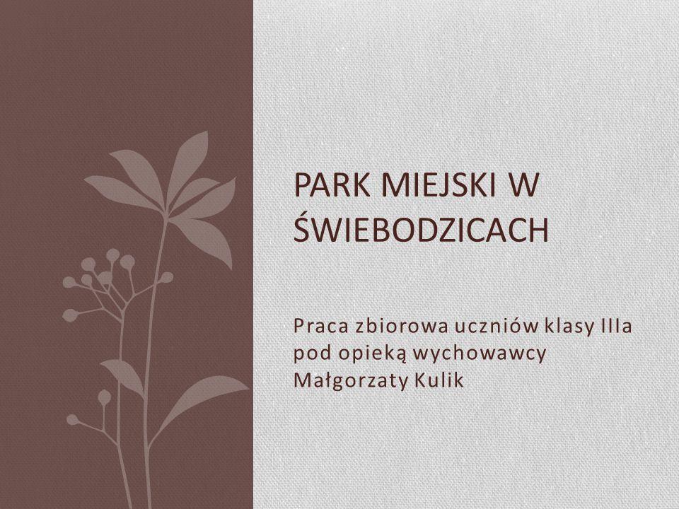 Praca zbiorowa uczniów klasy IIIa pod opieką wychowawcy Małgorzaty Kulik PARK MIEJSKI W ŚWIEBODZICACH