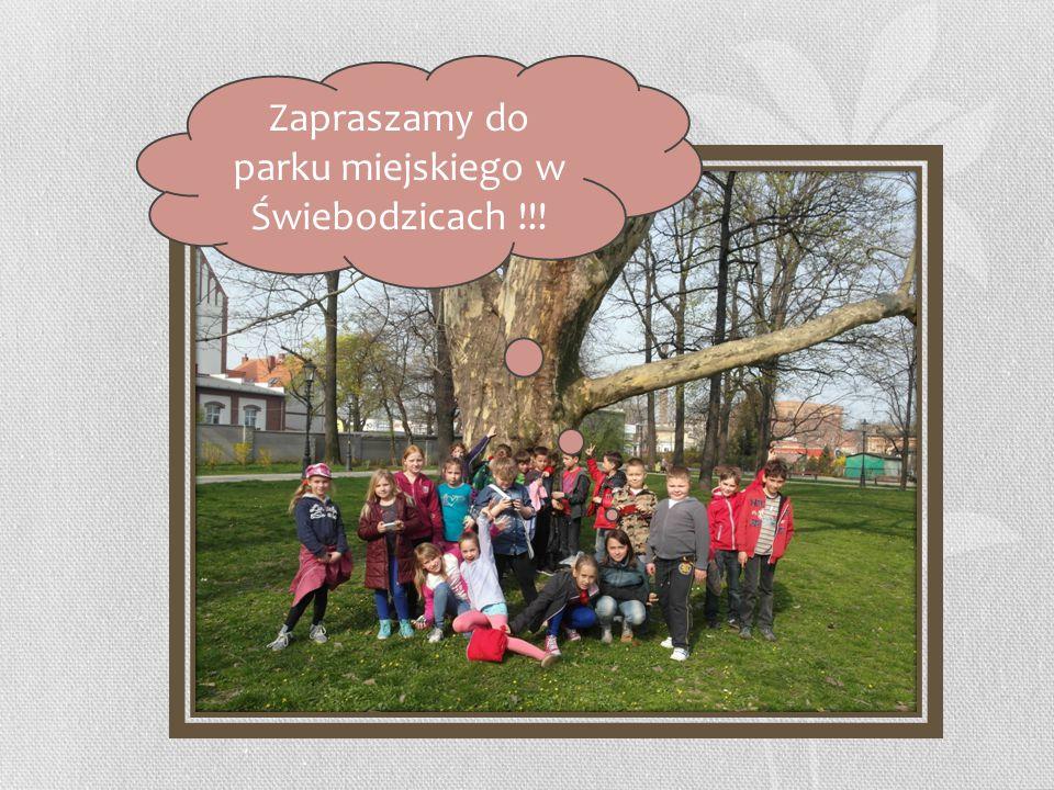 Zapraszamy do parku miejskiego w Świebodzicach !!!