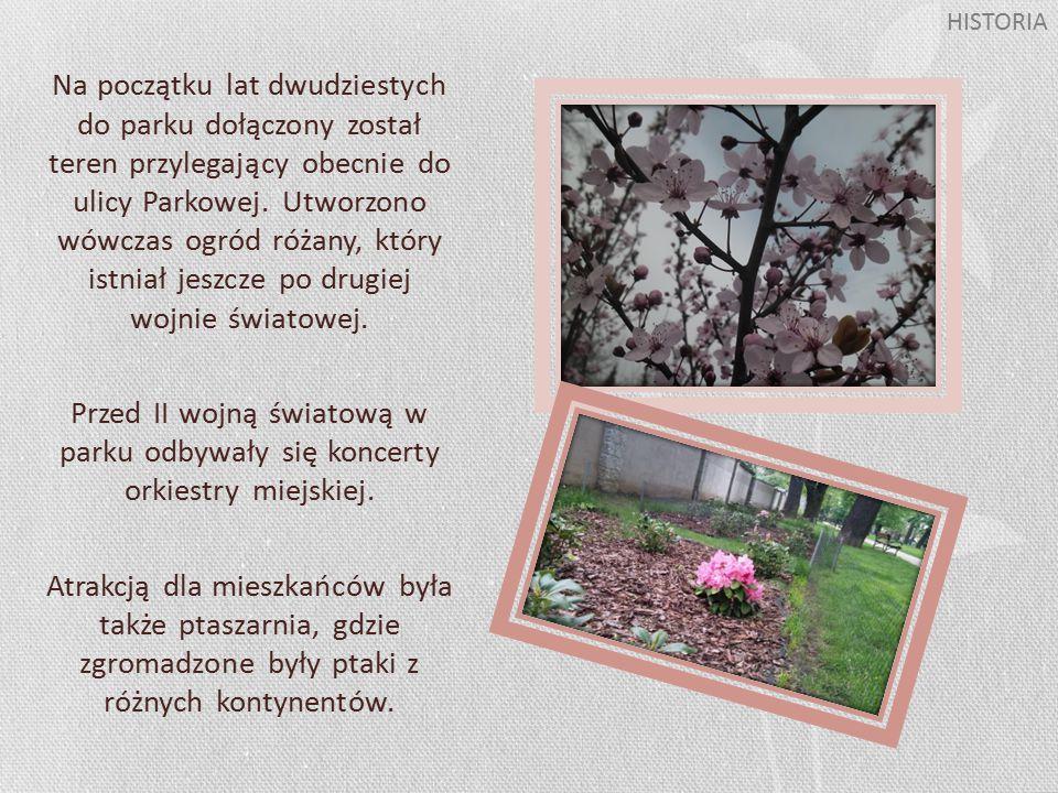 W parku znajduje się DĄB PAMIĘCI oraz tablica poświęcona ofiarom zbrodni katyńskiej i katastrofy lotniczej w Smoleńsku.