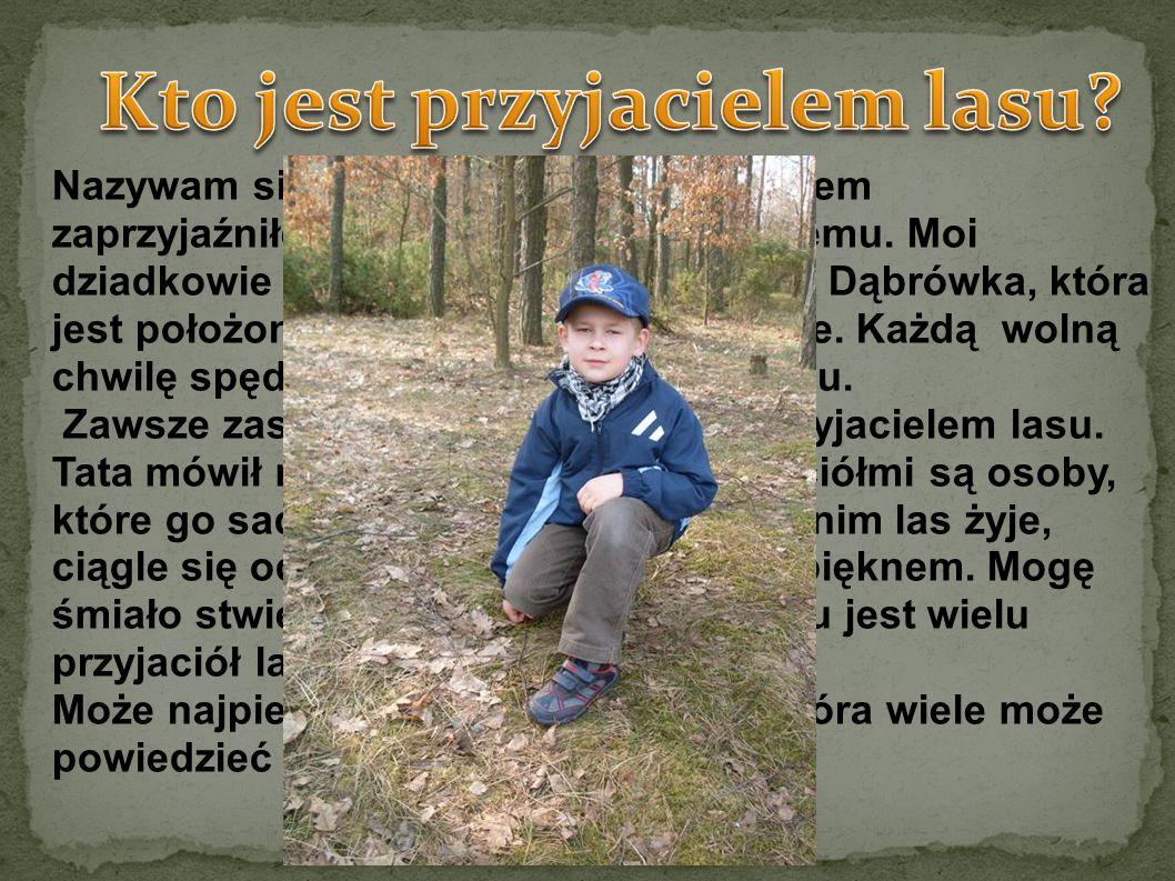 Nazywam się Franciszek Połetek. Z lasem zaprzyjaźniłem się już bardzo dawno temu. Moi dziadkowie mieszkają w miejscowości Dąbrówka, która jest położon