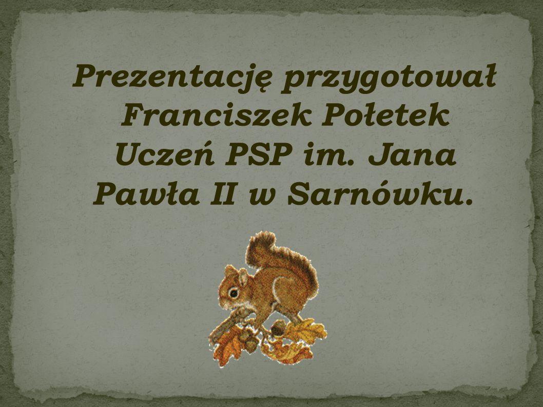 Prezentację przygotował Franciszek Połetek Uczeń PSP im. Jana Pawła II w Sarnówku.