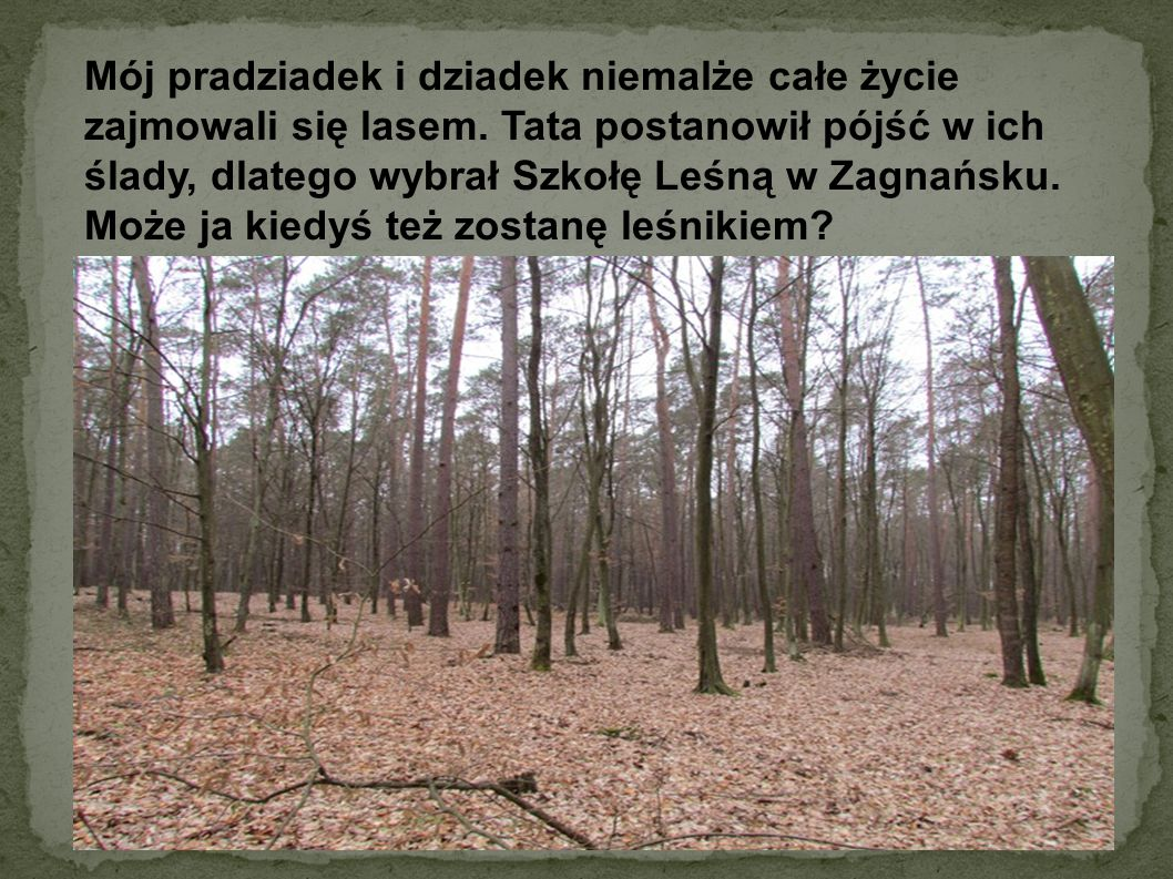 Mój pradziadek i dziadek niemalże całe życie zajmowali się lasem. Tata postanowił pójść w ich ślady, dlatego wybrał Szkołę Leśną w Zagnańsku. Może ja