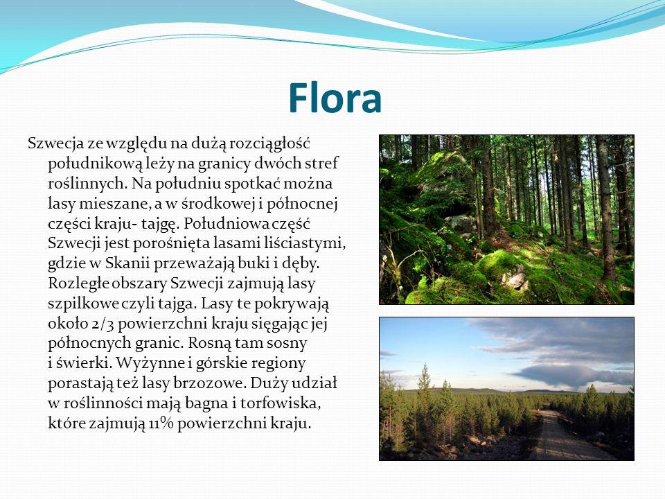 Flora Szwecja ze względu na dużą rozciągłość południkową leży na granicy dwóch stref roślinnych. Na południu spotkać można lasy mieszane, a w środkowe