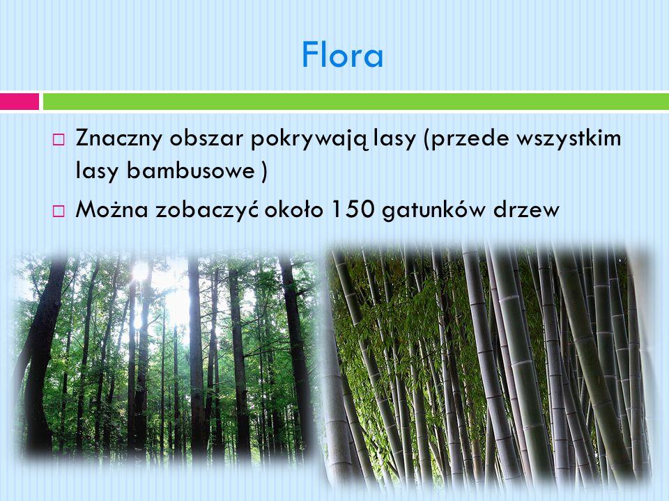 Flora  Znaczny obszar pokrywają lasy (przede wszystkim lasy bambusowe )  Można zobaczyć około 150 gatunków drzew