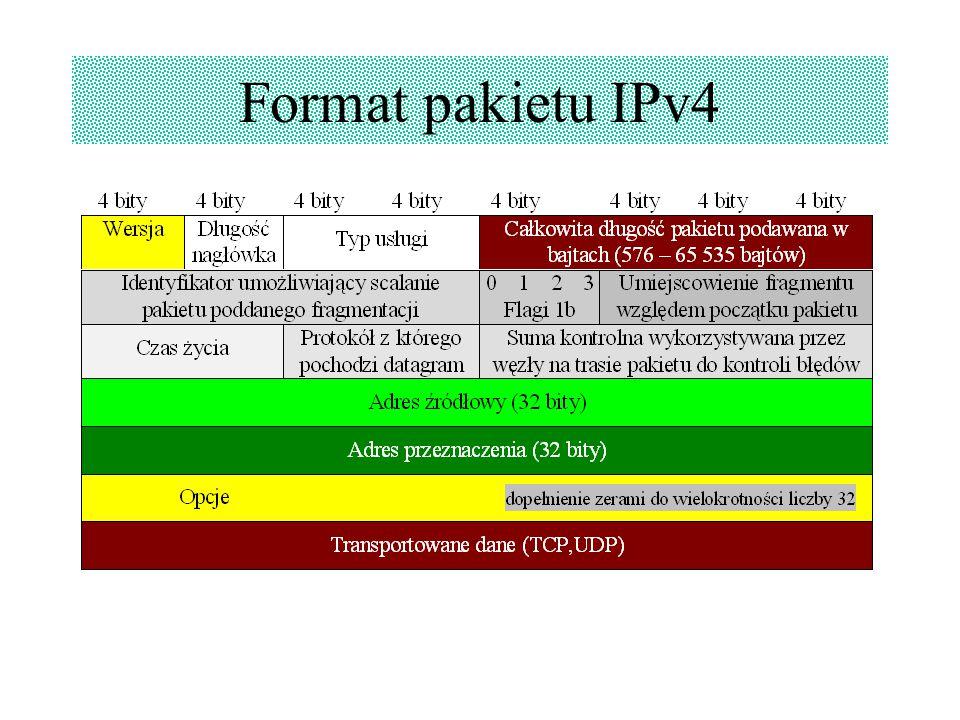 Format pakietu IPv4