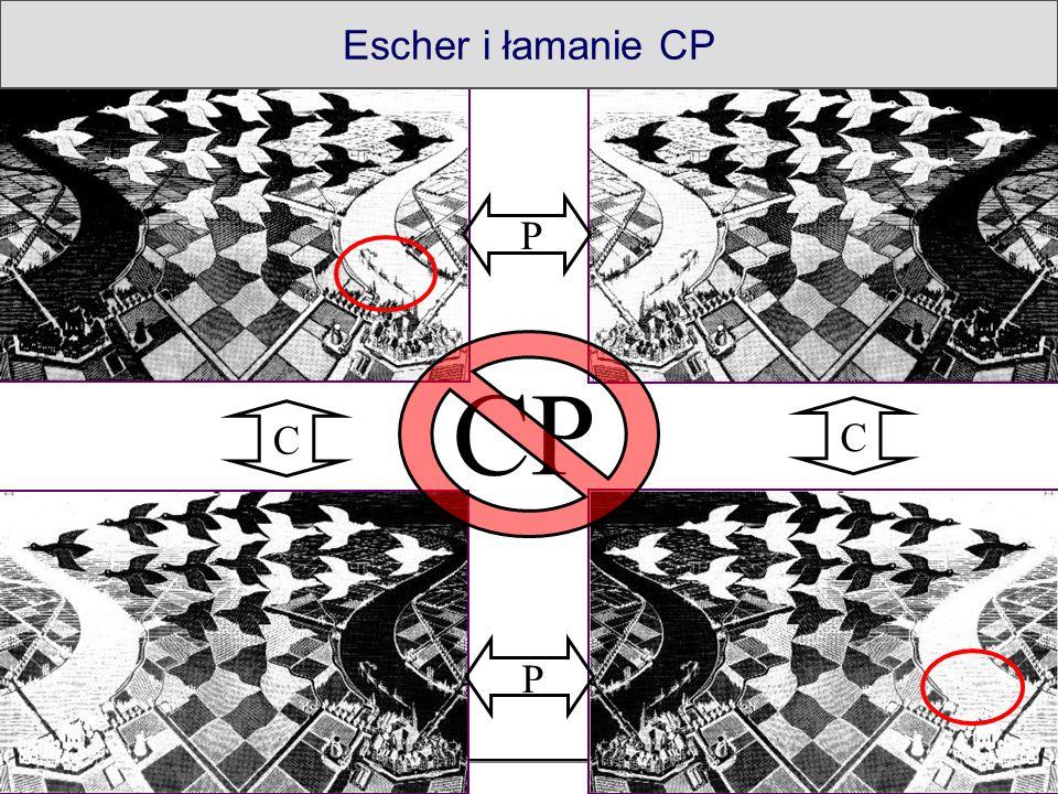 16 2008-11-20M. Witek - Antymateria P P C C Escher i łamanie CP CP