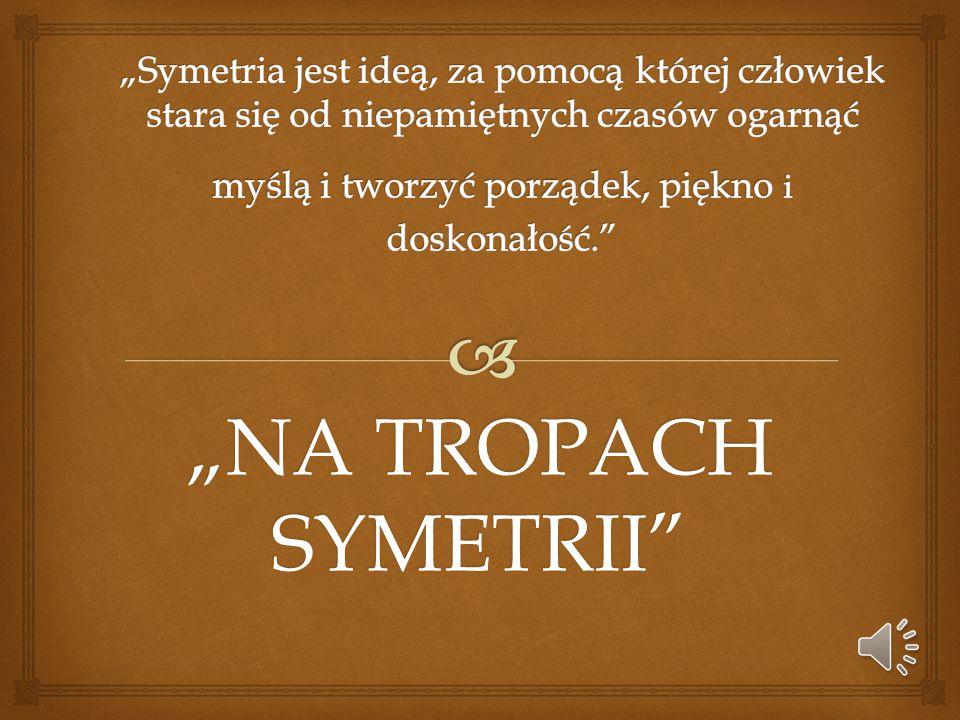 """""""NA TROPACH SYMETRII"""