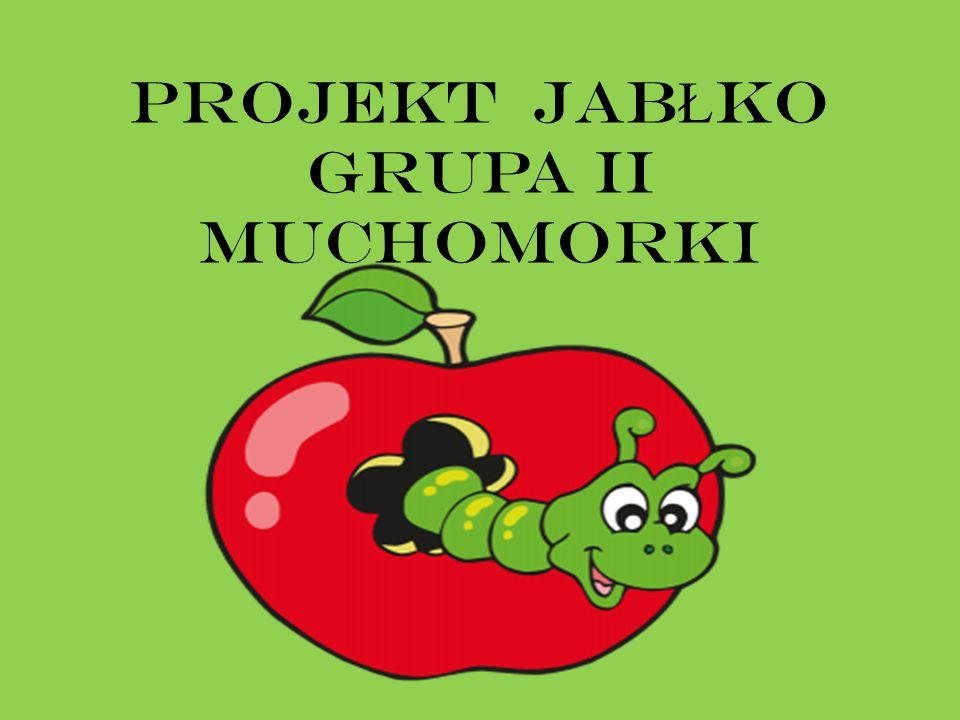 PROJEKT JAB Ł KO grupa II Muchomorki