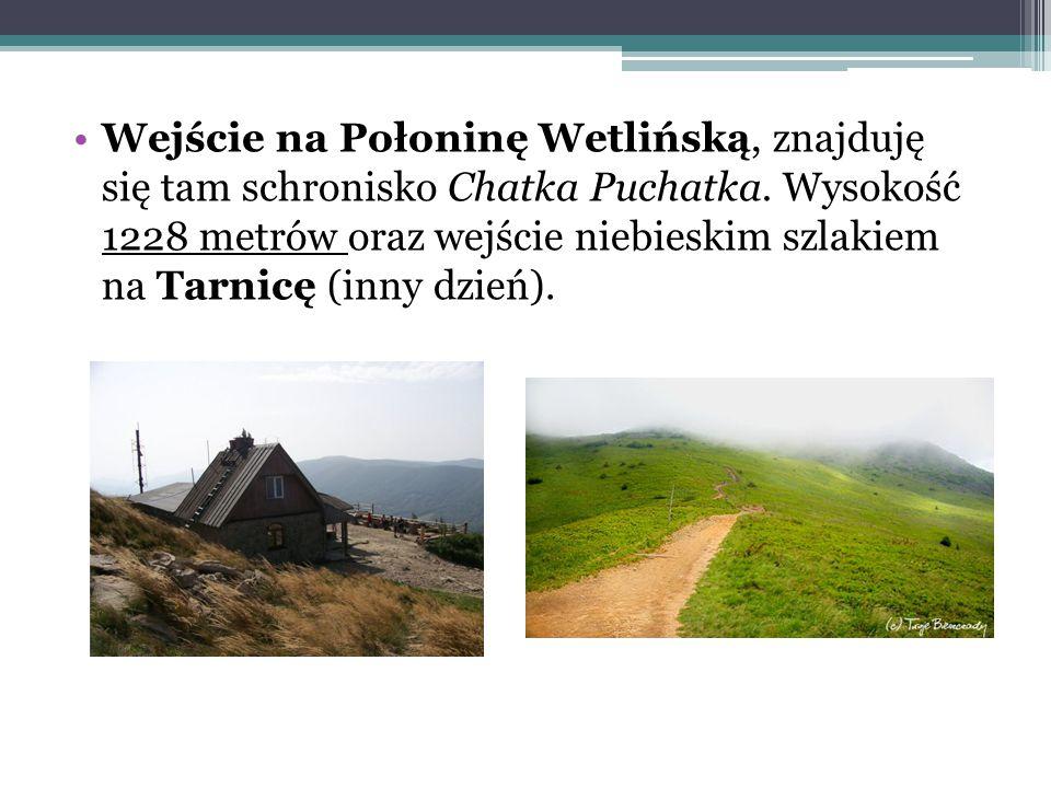 Wejście na Połoninę Wetlińską, znajduję się tam schronisko Chatka Puchatka. Wysokość 1228 metrów oraz wejście niebieskim szlakiem na Tarnicę (inny dzi
