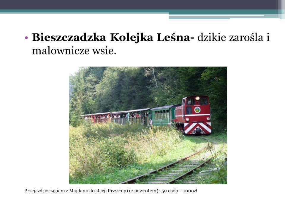 Bieszczadzka Kolejka Leśna- dzikie zarośla i malownicze wsie. Przejazd pociągiem z Majdanu do stacji Przysłup (i z powrotem) : 50 osób – 100ozł